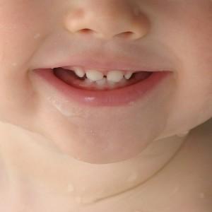 Les premi res dents de b b quel ge - A quel age couper les ongles de bebe ...