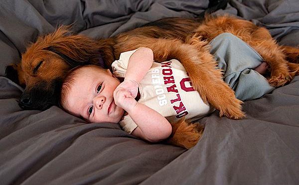 Quand Bébé Pose Avec Son Chien Babybe